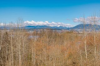 Photo 26: 15861 114 Avenue in Surrey: Fraser Heights House for sale (North Surrey)  : MLS®# R2614847