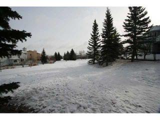 Photo 20: 303 MACEWAN VALLEY Mews NW in CALGARY: MacEwan Glen Residential Detached Single Family for sale (Calgary)  : MLS®# C3462411