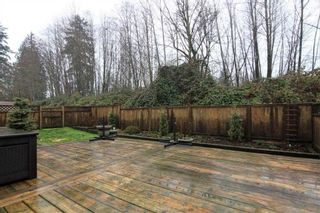 Photo 16: 3 23151 HANEY BYPASS in Maple Ridge: Cottonwood MR Townhouse for sale : MLS®# R2231499