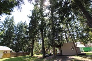 Photo 34: 4192/4196 South Ashe Crescent: Scotch Creek House for sale (North Shuswap)  : MLS®# 10200669