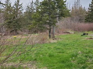 Photo 2: VL Hunter Road in West Wentworth: 103-Malagash, Wentworth Vacant Land for sale (Northern Region)  : MLS®# 202110930