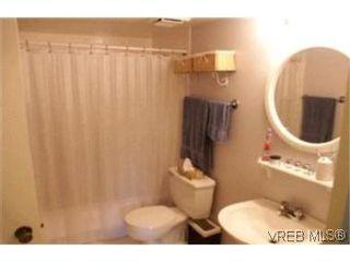 Photo 8:  in VICTORIA: Vi Fairfield East Condo for sale (Victoria)  : MLS®# 386948