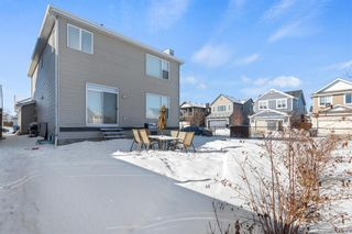Photo 33: 101 COPPERSTONE Close SE in Calgary: Copperfield Detached for sale : MLS®# A1076956