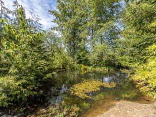 Photo 9: 7511 Howard Rd in MERVILLE: CV Merville Black Creek House for sale (Comox Valley)  : MLS®# 839801