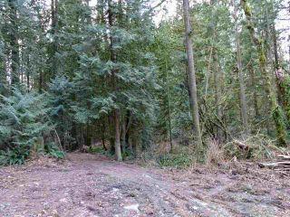 Photo 8: 25389 98 Avenue in Maple Ridge: Thornhill MR Land for sale : MLS®# R2537550