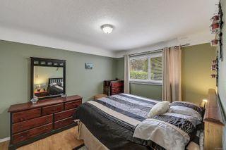 Photo 14: 3529 Savannah Ave in : SE Quadra House for sale (Saanich East)  : MLS®# 885273