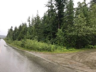 Photo 7: Lot #2 Eagle Bay Road: Eagle Bay Vacant Land for sale (Shuswap Lake)  : MLS®# 10187525