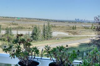 Photo 10: 105 Royal Crest View NW in Calgary: Royal Oak Residential for sale : MLS®# A1060372