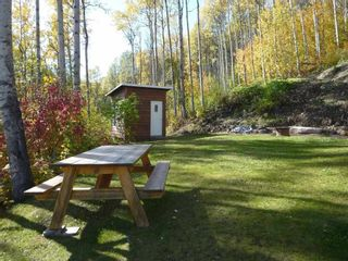Photo 12: 4485 HUDSON BAY MOUNTAIN ROAD Road in Smithers: Smithers - Rural Manufactured Home for sale (Smithers And Area (Zone 54))  : MLS®# R2447352
