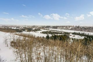 Photo 21: 403 1188 HYNDMAN Road in Edmonton: Zone 35 Condo for sale : MLS®# E4228866