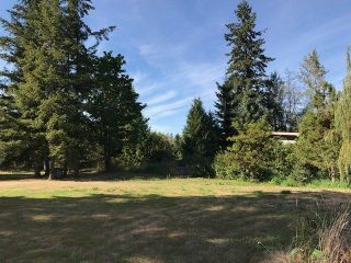 Photo 4: 136 232 Street in Langley: Campbell Valley House for sale : MLS®# R2222115