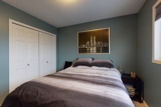 Photo 28: 1530 37b Ave in Edmonton: House for sale : MLS®# E4228182