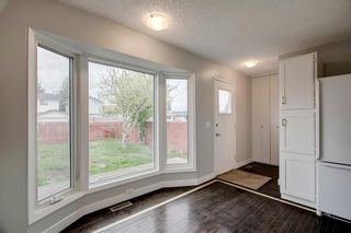 Photo 19: 23 SUNVALE Court SE in Calgary: Sundance Detached for sale : MLS®# C4297368