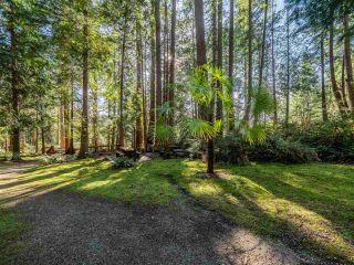 Photo 21: 8484 REDROOFFS ROAD in Halfmoon Bay: Halfmn Bay Secret Cv Redroofs House for sale (Sunshine Coast)  : MLS®# R2545137