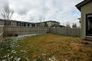 Photo 36: 3954 CLAXTON Loop in Edmonton: Zone 55 House for sale : MLS®# E4226999