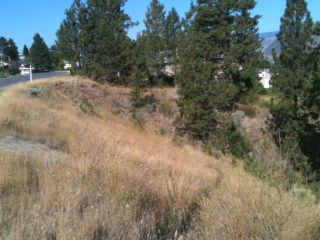 Photo 42: 1780 COLDWATER DRIVE in : Juniper Heights House for sale (Kamloops)  : MLS®# 136530