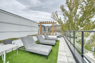 Photo 30: 214 515 4 Avenue NE in Calgary: Bridgeland/Riverside Apartment for sale : MLS®# A1152344