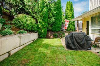 """Photo 23: 17 22900 126 Avenue in Maple Ridge: East Central Townhouse for sale in """"COHO CREEK ESTATES"""" : MLS®# R2482443"""
