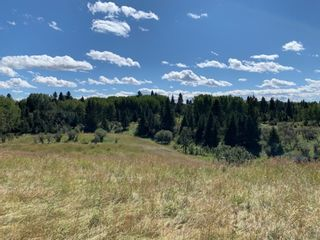 Photo 5: NONE-192 St W and 274 Ave W-Rural Foothills County-
