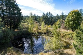 Photo 10: 6081 Old West Saanich Rd in : SW West Saanich House for sale (Saanich West)  : MLS®# 887444