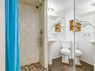 Photo 46: 1701 26 Avenue SE in Calgary: Inglewood Detached for sale : MLS®# A1035559