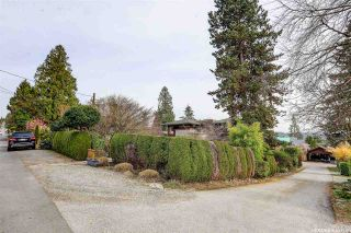 Photo 31: 1388 INGLEWOOD Avenue in West Vancouver: Ambleside House for sale : MLS®# R2559392