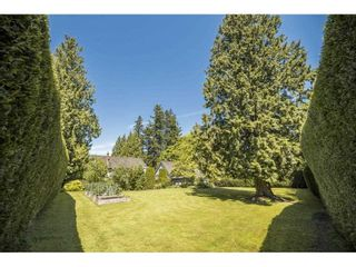 """Photo 35: 17332 26A Avenue in Surrey: Grandview Surrey House for sale in """"Country Woods"""" (South Surrey White Rock)  : MLS®# R2557328"""