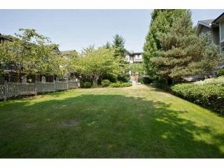 Photo 20: 51 20176 68 AVENUE in Langley: Willoughby Heights Home for sale ()  : MLS®# F1449385
