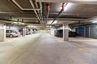 Photo 42: 215 279 SUDER GREENS Drive in Edmonton: Zone 58 Condo for sale : MLS®# E4261429