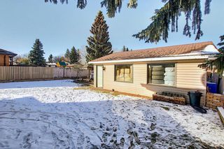 Photo 24: 348 TEMPLETON Circle NE in Calgary: Temple Detached for sale : MLS®# A1090566