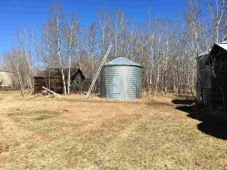 Photo 28: 60207 RR 155: Rural Smoky Lake County House for sale : MLS®# E4195050
