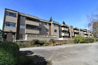 """Photo 15: 23 2444 WILSON Avenue in Port Coquitlam: Central Pt Coquitlam Condo for sale in """"ORCHARD"""" : MLS®# R2247251"""