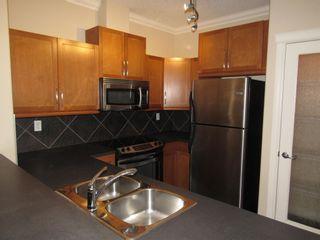 Photo 11: 329 10121 80 Avenue in Edmonton: Zone 17 Condo for sale : MLS®# E4255025