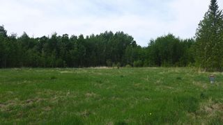 Photo 17: 54411 RR 40: Rural Lac Ste. Anne County Rural Land/Vacant Lot for sale : MLS®# E4239946