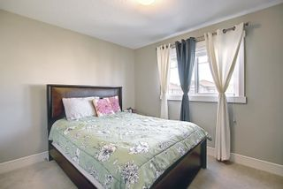 Photo 19: 3664 8 Street in Edmonton: Zone 30 House for sale : MLS®# E4253213