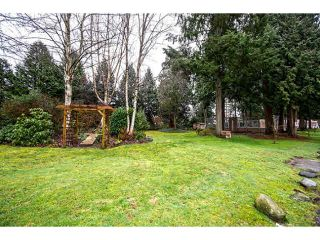"Photo 16: 109 13786 103RD Avenue in Surrey: Whalley Townhouse for sale in ""THE MEADOWS"" (North Surrey)  : MLS®# F1431821"