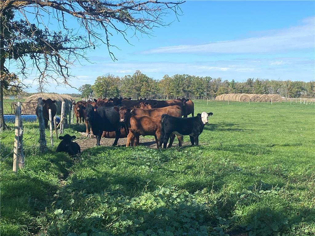 Main Photo: 17015 Otto Church Road in Lundar: R19 Farm for sale : MLS®# 202123384