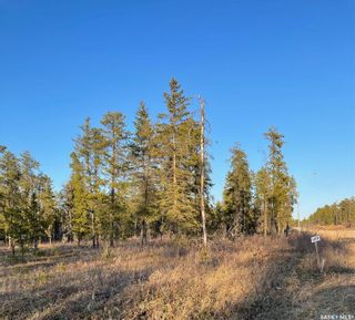 Photo 1: Over 1 acre lots in Hudson Bay: Lot/Land for sale : MLS®# SK850482
