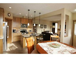 Photo 9: 254 CHAPARRAL VALLEY Drive SE in CALGARY: C-285 Residential Attached for sale (Calgary)  : MLS®# C3554170
