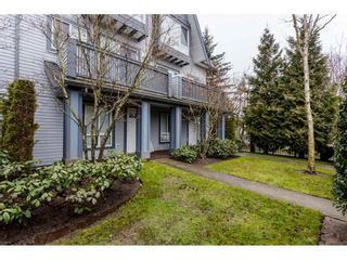 Photo 20: 78 16388 85 Avenue in Surrey: Fleetwood Tynehead Townhouse for sale : MLS®# R2147335