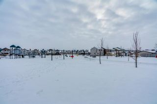 Photo 41: 65 Skyview Point Green NE in Calgary: Skyview Ranch Semi Detached for sale : MLS®# A1070707