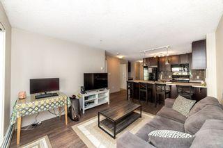 Photo 10: 203 5510 SCHONSEE Drive in Edmonton: Zone 28 Condo for sale : MLS®# E4246010