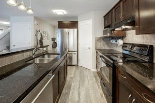 Photo 15: 202 COPPERPOND Bay SE in Calgary: Copperfield Detached for sale : MLS®# C4294623