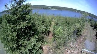 Photo 6: Lot 1 West Liscomb Point in West Liscomb: 303-Guysborough County Vacant Land for sale (Highland Region)  : MLS®# 202114674