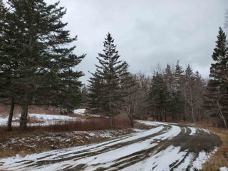 Photo 5: LOT 4 Hampton Mountain Road in Hampton: 400-Annapolis County Vacant Land for sale (Annapolis Valley)  : MLS®# 202101572