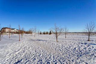 Photo 38: 134 Coverton Heights NE in Calgary: Coventry Hills Detached for sale : MLS®# A1071976