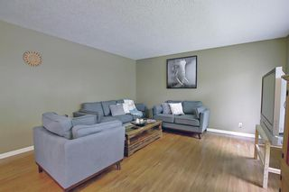 Photo 4: 1228 19 Street NE in Calgary: Mayland Heights Detached for sale : MLS®# A1118594