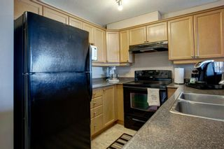 Photo 13: 303 1833 11 Avenue SW in Calgary: Sunalta Apartment for sale : MLS®# A1083577