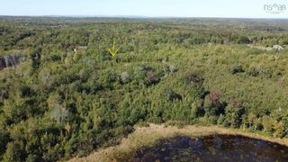 Photo 4: Lot 4 Powell Road in Little Harbour: 108-Rural Pictou County Vacant Land for sale (Northern Region)  : MLS®# 202125550