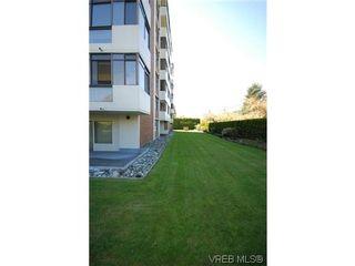 Photo 14: 404 420 Linden Ave in VICTORIA: Vi Fairfield West Condo for sale (Victoria)  : MLS®# 627566